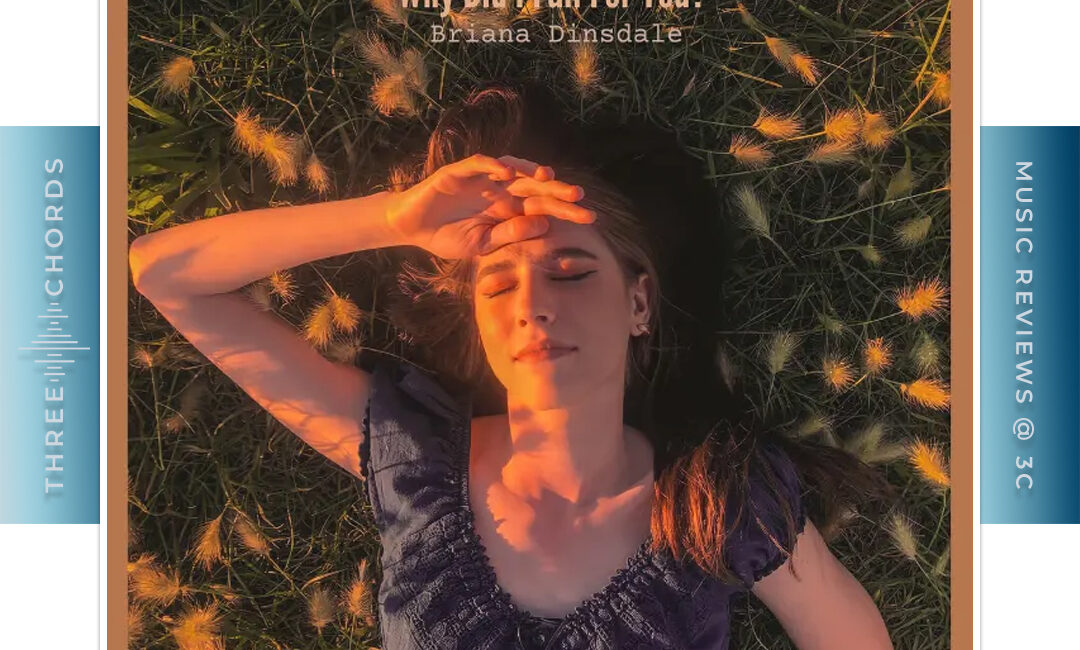 Briana Dinsdale - Why Did I Fall For You